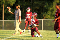 2014_foot_Lanier vs Wingfield-2