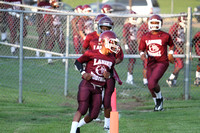 2014_foot_Lanier vs Wingfield-4