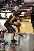 2014_BB_Girls_VicksburgvsLanier-15