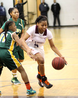 2014_BB_Girls_JimHillvsLanier-9