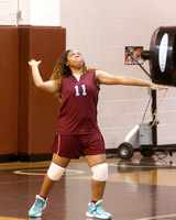 2016_Volleyball_TerryvsLanier-20