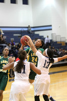 2014_BB_Girls_JimHillvsRidgeland-15