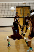 2016_Volleyball_TerryvsLanier-1